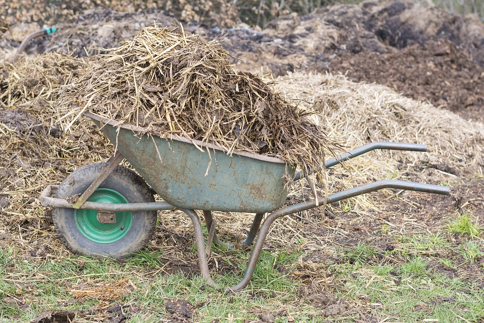 Le broyeur de végétaux, un appareil pour simplifier le ramassage de déchets