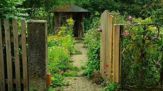 Le jardin : un terrain agréable pour un pique-nique